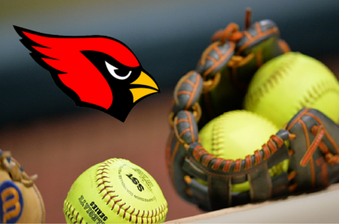 Lady Cards Defeat the Razorbacks
